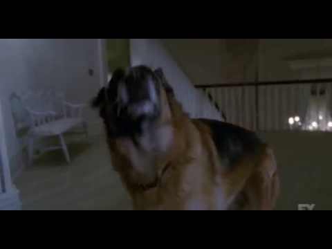 American Horror Story Coven - Fiona Gets A Guard Dog