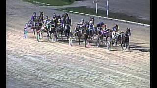 Vidéo de la course PMU CRITERIUM DEL 2 ANYS