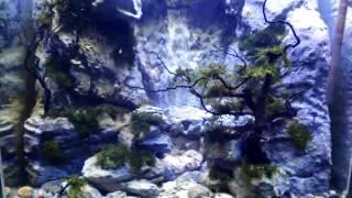 Sandfall aquarium