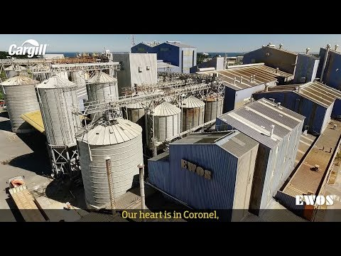 EWOS -Cargill- Corporate Video / English Version
