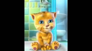 Repeat youtube video 湯姆貓兒子