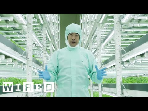 Tokyo's Vertical Farms - The Future of Farming | WIRED