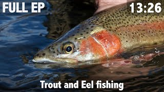 Trout and eel fishing