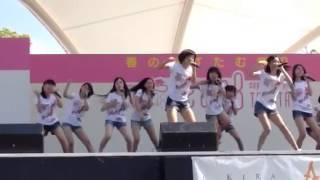 akb48 team8 あすたむらんど.