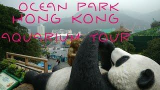 Ocean Park Hong Kong - Aquarium tour
