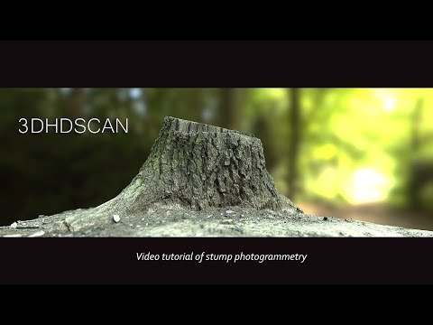 Stump photogrammetry tutorial