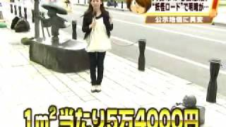 地価公示全国平均3年ぶりにマイナス 鳥取県・水木しげるロードは地道な...