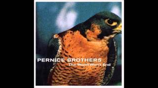 Watch Pernice Brothers Our Time Has Passed video