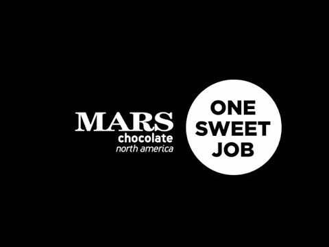 One Sweet Job: Day in the life of Mars Chocolate's Territory Sales Representative