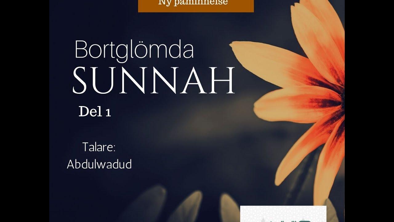 Bortglömda Sunnah | del 1 | Muslimappen