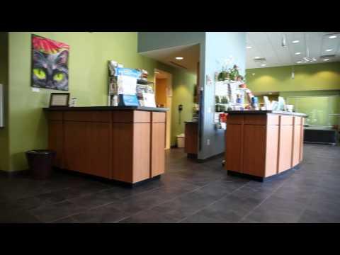 Atlantic Animal Hospital Commercial