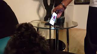 Dog howling at girl trying to sing on Instagram