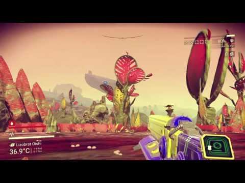 No Country For Old Man's Sky