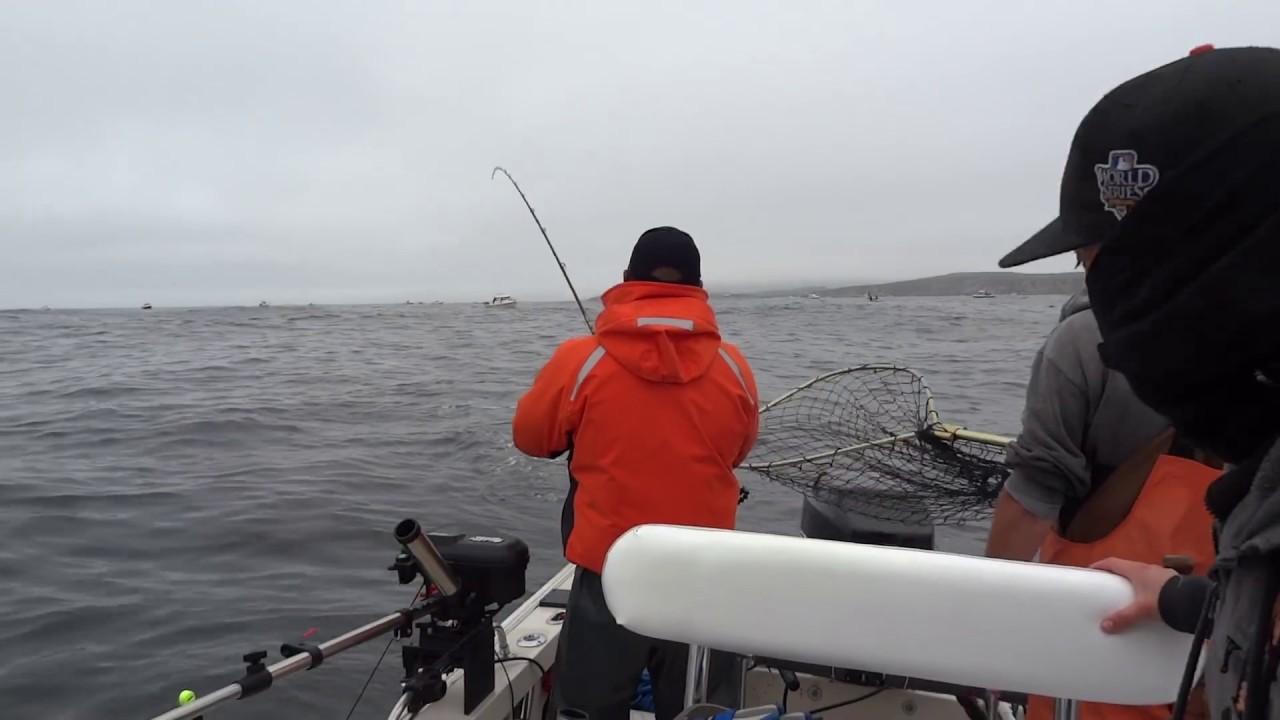 Bodega bay salmon fishing easy limits again youtube for Bodega bay fishing reports
