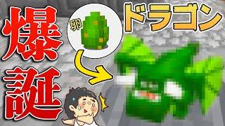 【カズぽこ】新ドラゴンがキタ!!PART35(前編)シーズン3