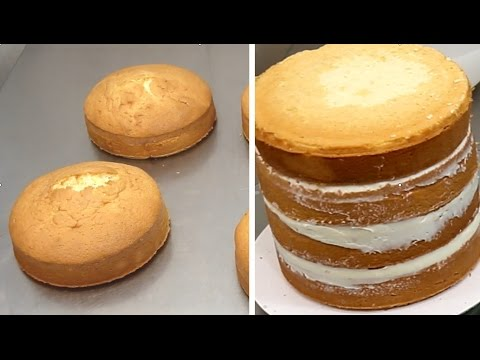 vanilla-sponge-cake-recipe---how-to-by-cakesstepbystep