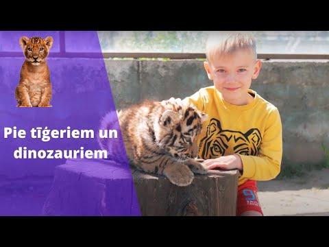 Idejas ceļojumam uz Klaipēdu! Lithuania, tigers and dinosaurs! Eng sub. ''Travel without borders''