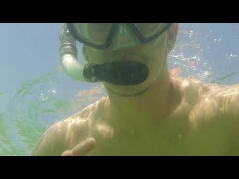 Underwater experience at Mamzar Beach Park #Dubai #beachindubai #park #underwater
