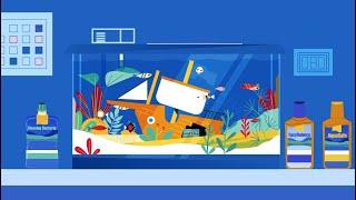 Aquarium Water Care | 30-30-30 | Tetra