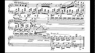 F. Chopin: Nocturne op. 9 no. 2 ; with Chopin