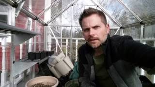 Fall Vegetable Gardening in Cold Climates