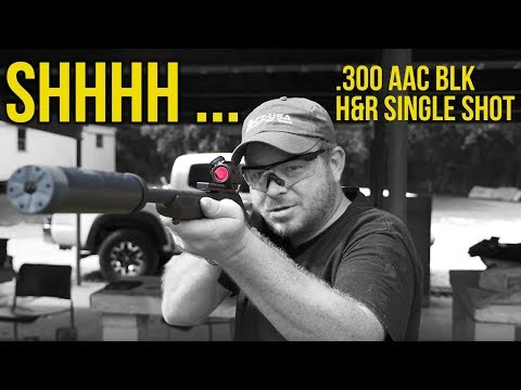 Silent Single Shot Fun: AAC .300 Blackout H&R Handi Rifle