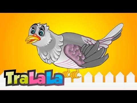 Cucule pasare sura - Cantece pentru copii