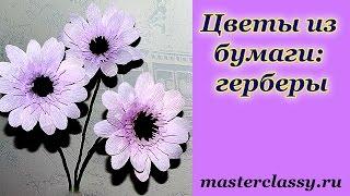 Paper flowers. Цветы из бумаги: герберы своими руками. Как сделать цветок из бумаги. Видео урок