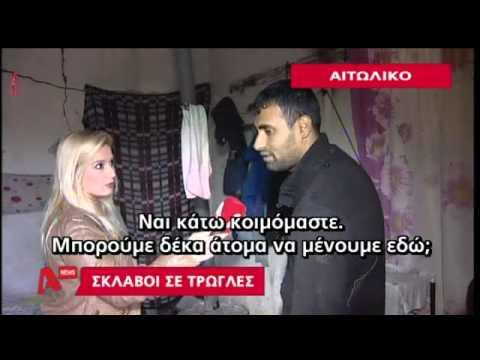 Alpha News - «Σκλάβοι» στο Αιτωλικό