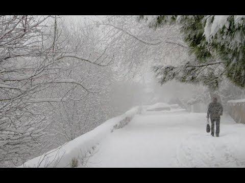 Мартовские метели. Снегопад в Москве. Штормовой циклон принес в Москву сильный снег