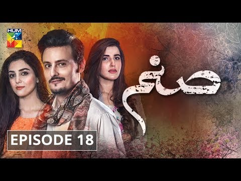 Sanam Episode 18 HUM TV Drama