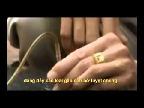 BTV Hoai Anh noi khong voi mat gau GiaoducVietNam