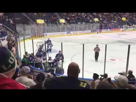 Intense Brawl at ECHL Hockey Game