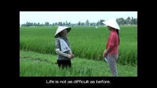 Ngo Thi Vi, Vietnam -- Farmer Profile