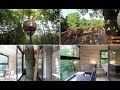 The bird's nest treehouse with a 100 year old tree inside