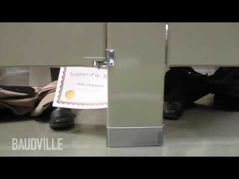 Baudville Cubicle Chronicles - Priceless Presentation