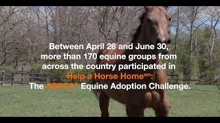 ASPCA Help a Horse Home Challenge 2019 Winner Announcement