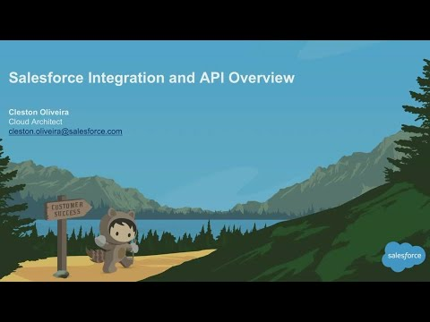 Salesforce Integration and API Overview (1)