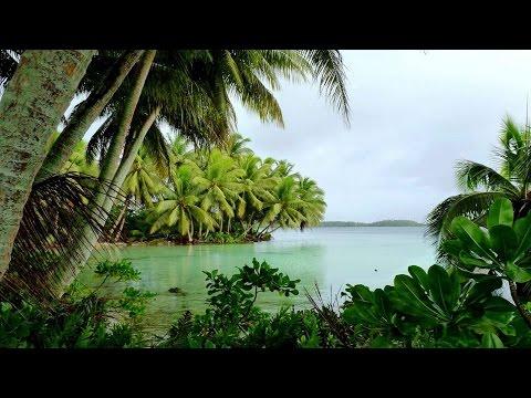 Tropical Music - Paradise Lagoon