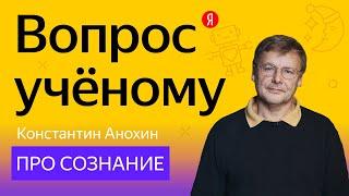 Вопрос учёному: нейробиолог Константин Анохин — про сознание и интеллект