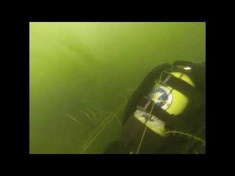 København: Dyk i søerne