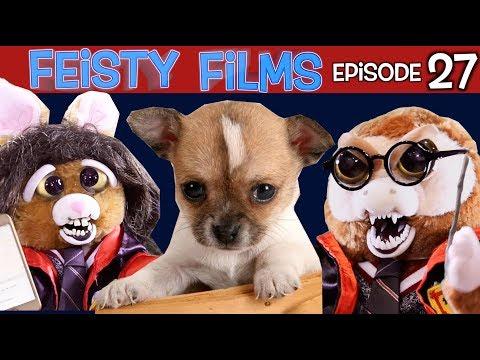 Feisty Films Episode 27: Harry Potter Turns Feisty!