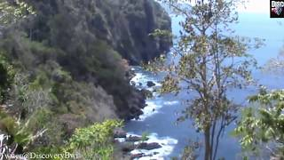 Pesona Indonesia : Teluk Hijau (Green Bay), Pantai Cantik yang Disembunyikan Banyuwangi