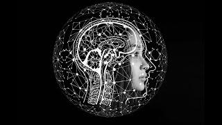 Das menschliche Gehirn: Möglichkeiten und Grenzen