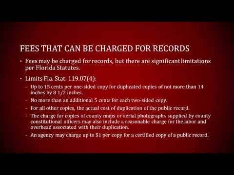 How to Make Florida Public Records Requests under the Sunshine Law - Florida Rights Institute