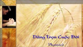 Dâng Trọn Cuộc Đời - Phanxicô