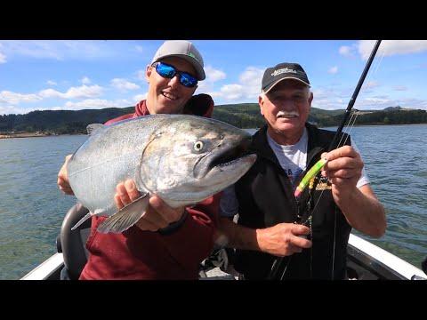 Lower Columbia River Super Bait Salmon