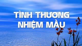 Tình Thương Nhiệm Mầu by Hồng Trần Phạm Đình Đài