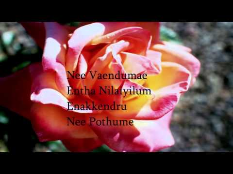 Neeyum Naanum - Karaoke Naanum Rowdy Than - With Lyrics Kratos612