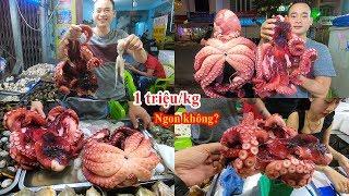 Ăn Bạch tuộc khổng lồ giá 1 triệu/kg ở quán Tôm hùm 54 Tân Sơn Nhì | giant octopus eating